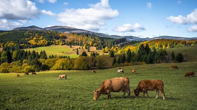 krása rodnej krajiny.jpg